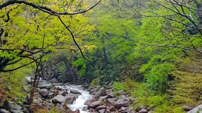 (18-자-093)자연환경_편도희01.jpg